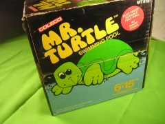 Mr turtle pool 006